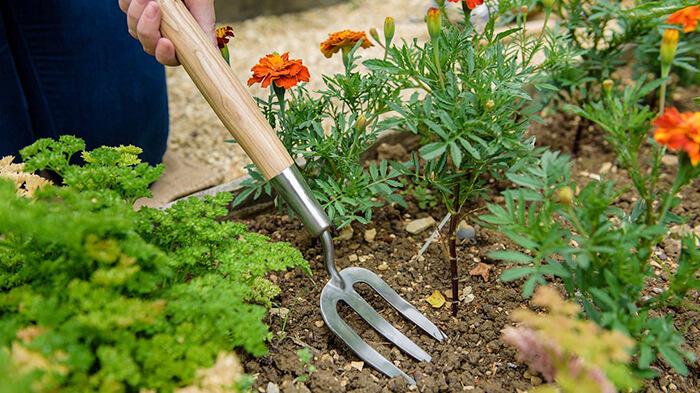 چنگک باغبانی