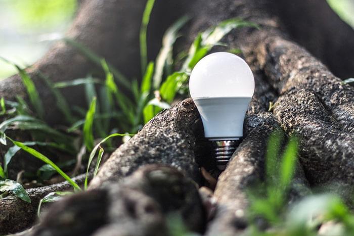 برای نجات زمین از led استفاده کنید