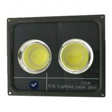 پروژکتور-COB-اکی-لایتینگ-100-وات-IP660