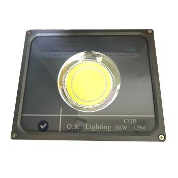 پروژکتور-COB-اکی-لایتینگ-30-وات-IP660
